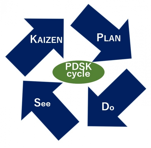 Pdsk-cycle-fig